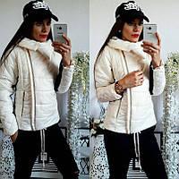 Куртка с косой застежкой и контрастной отделкой рукавов НН! 1044