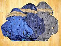 Куртки зимние на мальчика оптом, Nice Wear , 2-6 рр
