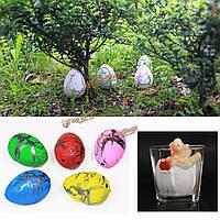 2X яйца среднего смешные магии растущего штриховкой динозавров ребенка подарки 4 × 3.5 см