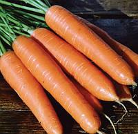 Семена Моркови Роте-Ризен
