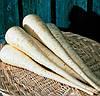 БЕЛАС - насіння пастернаку, 1 кг., SEMO