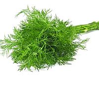 МАМУТ - семена укропа, 1 кг., SEMO, фото 1