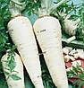 ЯДРАН - семена петрушки корневой, 500 грамм,  SEMO