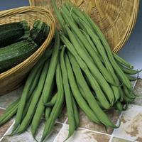 ГАМА - семена фасоли спаржевой, 3 000 грамм, Semo, фото 1