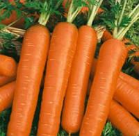 СМИРНА - семена моркови Нантская, 500 грамм, SEMO , фото 1