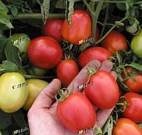 ЭСКОРТ - семена томата детерминантного, 10 000 семян, Semo, фото 1