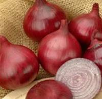 КАРМЕН (Вікторія) - насіння цибулі ріпчастої червоного, 500 грам, Semo, фото 1