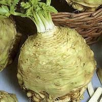 МАКСИМ - насіння селери кореневої, 10 000 насінин, Semo