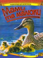 """Енциклопедія для допитливих """"Торнадо"""" """"Мами та малюки"""" А5 102-5"""