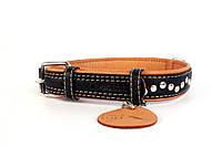Ошейник Collar Soft с металлическими украшениями черный верх, фото 1