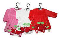 Бодики детские велюровые для девочки.Нарядные Сanini 807, фото 1