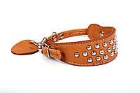 Ошейник Collar Soft с 2-мя пряжками с метал. украшениями коричневый верх, фото 1