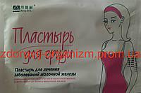 Пластырь для лечения заболеваний молочной железы Bang De Li 5 штук