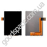 Дисплей Samsung Galaxy Star S5280, (S5282), копия высокого качества