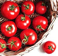 Как правильно садить помидоры