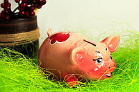 Копилка свинка малая