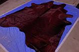 Крупная шкура коровы высшего качества, выдавленая под крокодила с блестящей и шелковистой бордовой шерстью, фото 2
