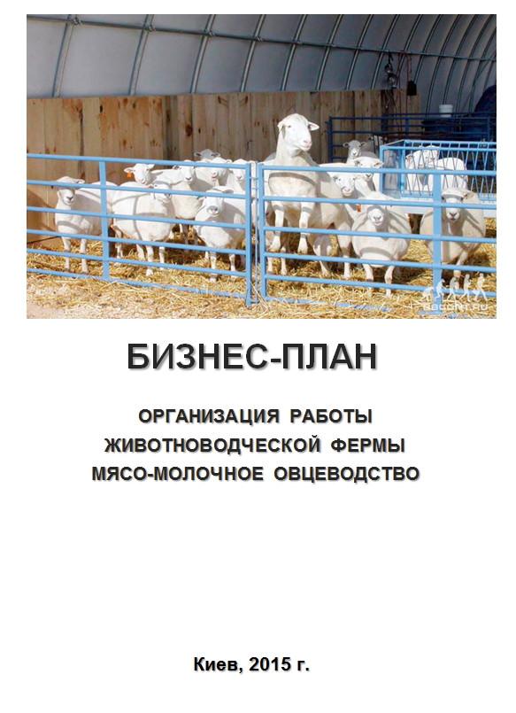 Бизнес план животноводческого комплекса бизнес план мастерской пк