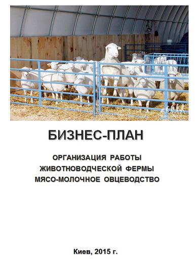 Бизнес - план (ТЭО).  Организация работы  животноводческой фермы. Выращивание овец. Овцеводство