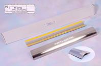 Opel Movano 2004-2010 гг. Накладки на пороги Натанико стандарт (4 шт, нерж.)
