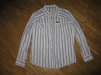 Рубашка GSUS CORNSTAR хлопок, L-XL