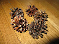Шишки сосновые для ландшафтного дизайна, 10 мешков