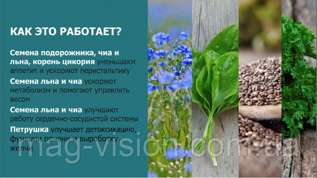 bio-in Activico свойства