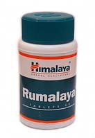 Rumalaya Himalaya 60 таблеток Румалая