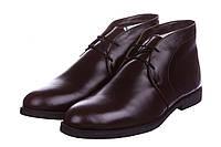 Ботинки мужские Celio Guzzi Desert Boots Winter Suede Chocolate, зимние ботинки челио гуцци коричневые