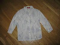 Блузка TAIFUN 100% хлопок, 36 размер