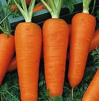 Семена Моркови Шантане 2461