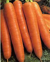 Семена моркови Деликатесная (без сердцевины)
