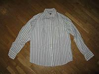 Рубашка VOYAGER 100% хлопок, М