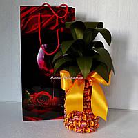 """Вкусный подарок """"Конфетный ананас"""""""