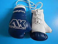 Сувенирные боксерские перчатки под заказ в школу бокса