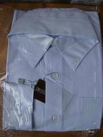 Рубашка белая школьная хпопок 65% р.31 на 6-7 лет, фото 1