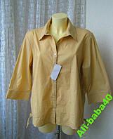 Блузка рубашка хлопок Agenda р.54