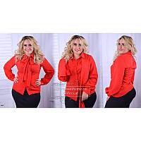 Блуза с бантом R-5029 красный (42-52)