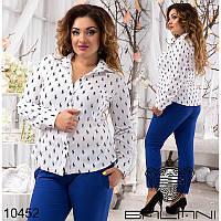 Блуза 1295бат белый, принт поло