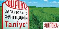 Талиус КЭ (1л) - фунгицид на зерновые колосовые культуры