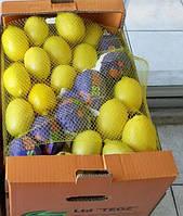 Лимон (сорт Интердонат) Фрукты