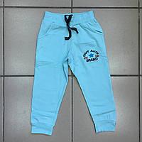 Детская одежда оптом Штаны спортивные начёс для мальчиков оптом р.2-9 лет