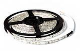 Светодиодная лента SMD 3528 на 60 диодов в 1-м метре, 4,8Вт/1м, белый телпый цвет, не герметичная, фото 3