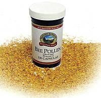 Пчелиная пыльца/Bee Pollen