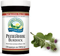 Репейник/Burdock NSP -желчегонное эффективное средство