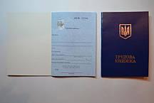 """Трудовая книжка """"Нова ТН"""" синяя с гербом-голограммой"""