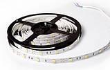 Светодиодная Led лента SMD 5050 на 30 диодов в 1-м метре, 7,2 Вт/1м, зеленый цвет, не герметичная, фото 3