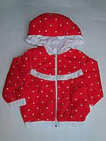 Осенняя куртка плащевка для девочек