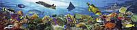 """Панно из листовых панелей ПВХ Регул """"Подводный мир"""""""