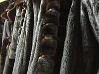 Де можна подивитися повний асортимент норкових шуб, кожушків, жилетів з натуральної норки
